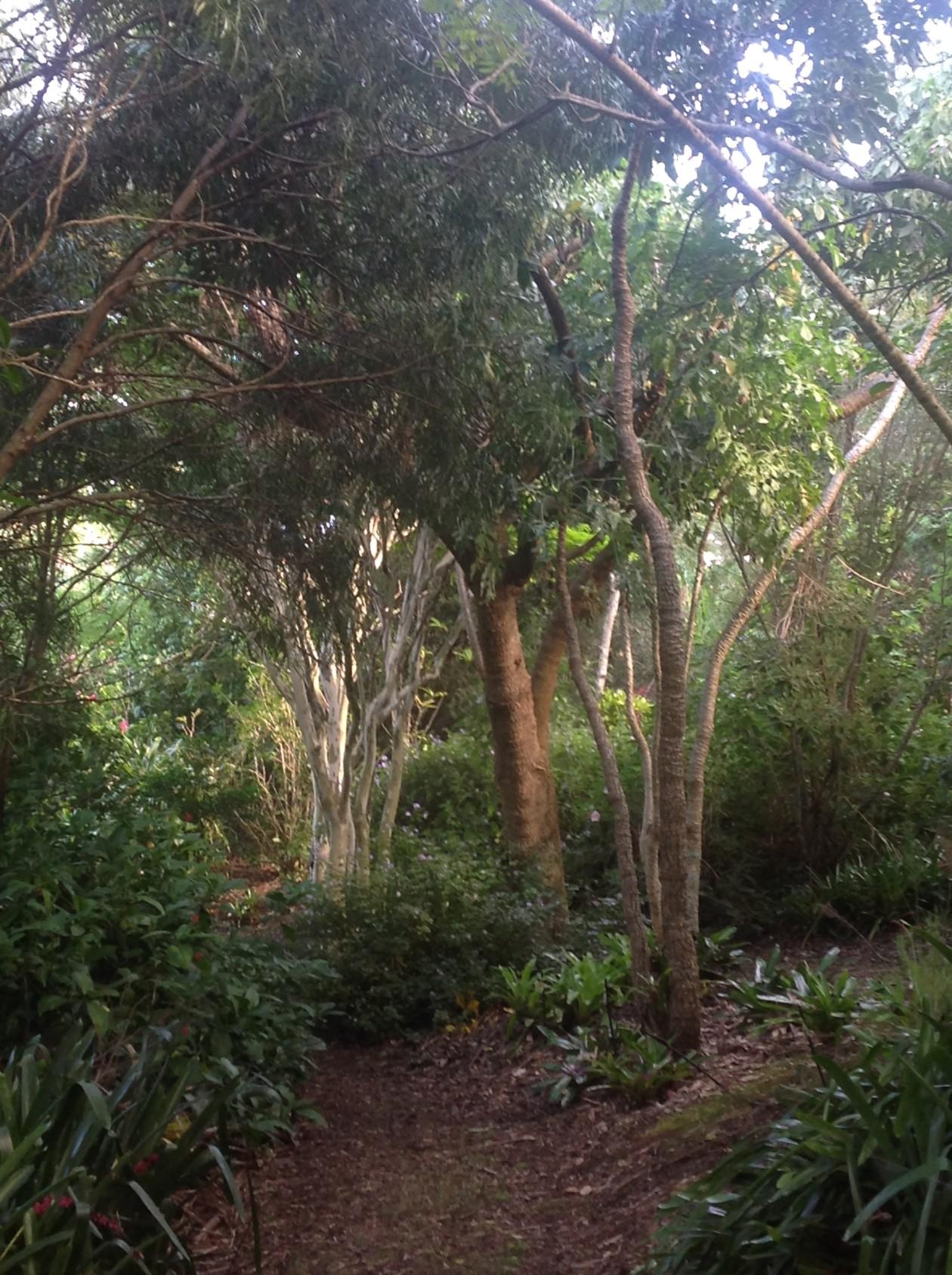 Art in the garden New Zealand