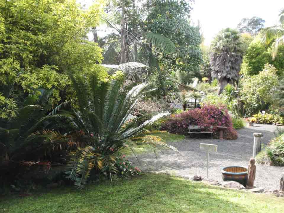 Sculpture park garden Wharepuke