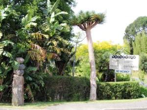 Wharepuke artpark entrance