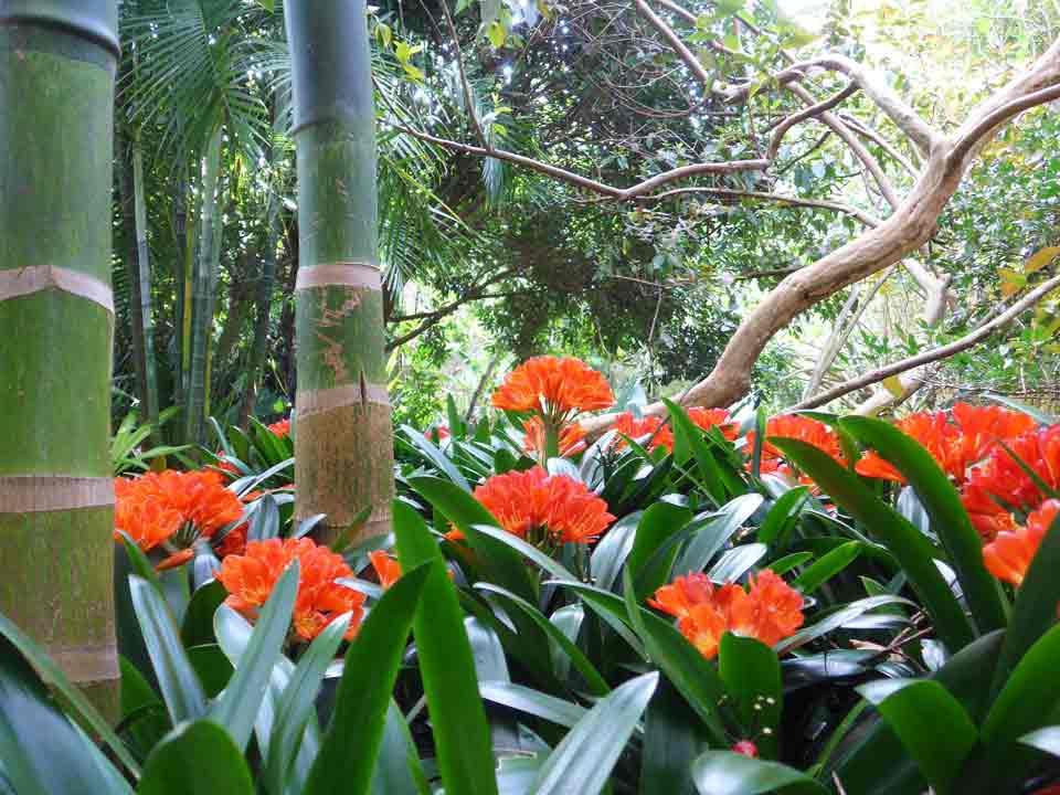 wharepuke sculpture gardens